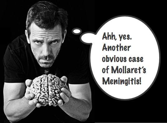 Mollaret's Meningitis