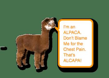 ALCAPA - Anomalous Left Coronary Artery from the Pulmonary Artery