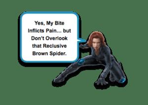 Brown Recluse Envenomation