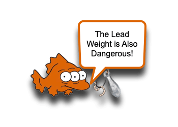 Lead Weight and Bullet Ingestion
