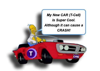 Chimeric Antigen Receptor T Cell (CAR T cell) Therapy