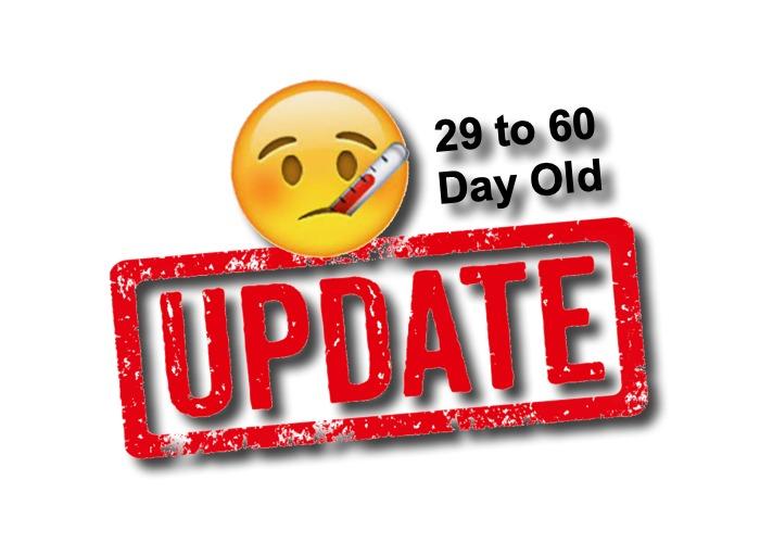 Febrile Infant 29 to 60 Days